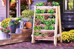 Drevený vertikálny záhon  Kreatívny nápad a návod do záhrady 1