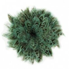"""Ringneck Pheasant Plumage 1 YD Light Turquoise Product SKU: RPS2.5_4YD Size: 2.5-4"""" x 1 yard Shop Feathers: www.featherplace.com/ringneck-pheasant-plumage-1-yd.html?___SID=U Pheasant Feathers, Light Turquoise, Herbs, Size 2, Yard, Shop, Patio, Herb, Courtyards"""