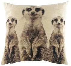 "Meerkats Cushion 18"" by Festive Glories"