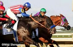 Bayern and California Chrome out of the gate at the Pennsylvania Derby, 9/20/2014.