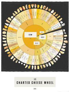 Kaas typen Poster het wiel van de gekarteerde kaas door PopChartLab