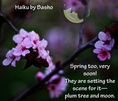 "Haiku by Basho: ""Spring too, very soon! They are setting the scene for it—plum tree and moon."""