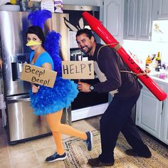 Looney Tunes Roadrunner and Wile E. Coyote Halloween costume.