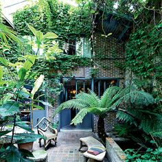 Un espace à penser luxuriant, vert, aéré pour remettre sa vie en perspective et penser à l'échelle de l'univers