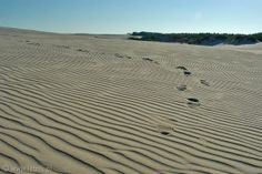 W for Wydmy - moving dunes in Leba