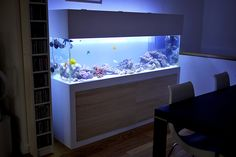 20 Modern Aquariums For Cool Interior Styles | Home Design And Interior