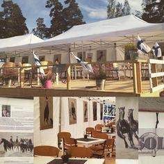 @strausadace #hevosstudio #artist #paintings at #Finnderby event - welcome to #gobillard #champagne_jm_gobillard_et_fils #terassi to enjoy the #equestrian #art while enjoying 3 course #menu, reason to #celebrate with #champagne , having best sights over #competition  #artforsale #custom #oilpainting #nbch2016 #horse #animals #hevoset #häst #hästar #finland #showjumping #dressage #sports #lifestyle #dining #design #interior