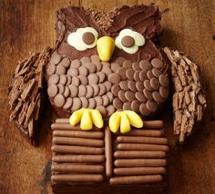 Chocolate owl cake 1st birthday idea?!!