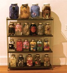 This is an interesting idea... for all those stuffed animals I have in the Rubbermaid totes in the attic! Don't wanna get rid of them but don't have a place to display then either- cute idea! Preserved stuffed animals. hilarious