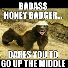 #BadAssHoneyBadger Dares You to go Up the Middle!    #softballswag #Slowpitch #softball @ispso