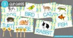 PETS CLIPCARD -ACTIVITIES FOR KIDS- MAMAYNENE