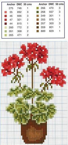 Flowers geraniums cross stitch.