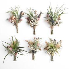Assorted air plant and wildflower boutonnieres. These feature oregano, dried blooms, and assorted wild flowers, with a twine treatment on the stem. This listing is for ONE boutonniere, but shows the variety you may receive. Order in advance by including your event date in the notes at checkout. We will ship them to arrive 3-10 days prior to ensure they look their best. Contact us for a custom order
