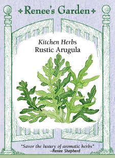 """Arugula, """"Rustic"""" Heirloom. Imported from Italy, very finely cut, deeply indented green leaves and edible blossoms. Holds much longer than regular arugula, with same tangy flavor. Perennial in mild climates."""