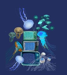 Jellyfish Television