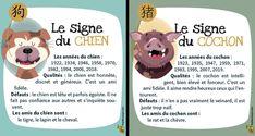 Les 12signes du zodiaque chinois ont plus de 2000ans. Ce sont tous des animaux. Il y a le rat, le bœuf, le tigre, le lapin, le dragon, le serpent, le cheval, la chèvre, le singe, le coq, le chien et enfin le cochon. D'après la légende, l'Empereur de jade aurait déterminé l'ordre des animaux du zodiaque chinois en les faisant participer à une course folle!
