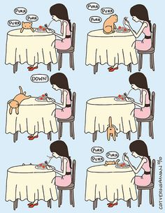 Cat vs Human :) this is my kitty Funny Cats, Funny Animals, Cute Animals, Crazy Cat Lady, Crazy Cats, I Love Cats, Cool Cats, Cat Vs Human, Animal Logic