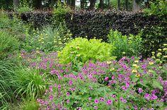 Jardins de Maizicourt - Flip - Picasa Webalbums