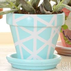 Personalize your terra-cotta pots with these three simple updates. Paint Garden Pots, Painted Plant Pots, Painted Flower Pots, Painted Pebbles, Flower Pot Art, Flower Pot Design, Pottery Pots, Decorated Flower Pots, Pottery Painting Designs
