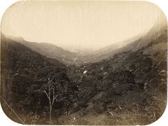 Marc Ferrez, Untitled, Rio de Janeiro, (1870)  The massively prolific Ferrez captured thousands of images all over Brazil, but is best remembered for documenting the rapid development of his home city of Rio—its harbor seen here in a relatively virgin state.