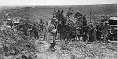 Wagon transportation in World War I was affected greatly by the shortage of horses and mules. Motorization of units, particularly field artillery, was stepped up in order to overcome the animal shortage. (Above, a mule team, hauling a U.S. ammunition wagon, is holding up the   advance of the whole column.  East of St. Mihiel, France, 13 September 1918.)
