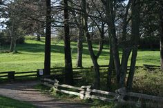 By angelindaskyz - Banfield park, Vic. Bc.