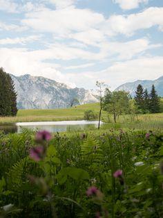 Der Westwanderweg am Attersee: von Nussdorf bis Stockwinkl - smilesfromabroad Seen, Salzburg, Highlights, Mountains, Nature, Travel, Outdoor, Bike Trails, Infinite