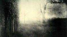 Sally Mann - Deep South - Photography