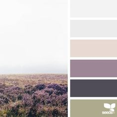 today's inspiration image for { color wander } is by @marie_canning ... thank you, Marie, for sharing your breathtaking photo in #SeedsColor !