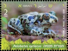 http://briefmarkenspiegel.com/web/2014/06/23/marke-der-woche-israels-gefaehrdete-lurche/