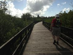 Harbor Palms Nature Park, Oldsmar Florida, , North of St. Petersburg, 4 hours, Free