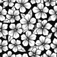 black and white seamless backgroundwith graphic outline of flowers Royalty Free Stock Vector Art Illustration