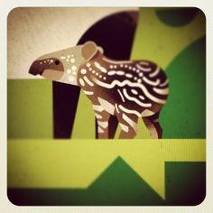 Baby tapir from the book 'DIE WELT DER WILDEN TIERE' by Dieter Braun, available in september 2014.