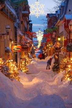 bluepueblo:  Snow Street, Quebec City, Canada photo via nadine   Now THAT looks like Christmas :-)