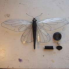 MisterFinch clear winged moth soft sculpture w plastic wings, veins machine sewn. Textile Sculpture, Soft Sculpture, Fabric Art, Fabric Crafts, Dragon Fly Craft, Fabric Butterfly, Bug Art, Beautiful Bugs, Insect Art