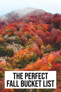 Looking to items to your fall bucket list? From epic destinations to everyday easy things, this comprehensive list has you covered! #fall #fallbucketlist #autumnbucketlist | fall bucket list | fall bucket list for couples | fall bucket list for families | fall bucket list 2020 | bucket list | autumn bucket list | fall | fall bucket list ideas | Cool Places To Visit, Places To Travel, Amazing Destinations, Travel Destinations, Best Travel Quotes, Travel Guides, Travel Tips, Travel Around, Travel Usa