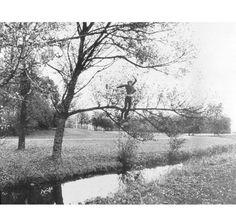 Broken Fall | Bas Jan Ader