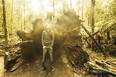 Man enjoying the fresh air and scenery when standing beside tree stump under sunlight in Mt Field National Park, Tasmania, Australia by Ryan Jorgensen