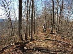 Hiking the Merritt Ridge Trail, Edgar Evins State Park, Silver Point, Tennessee