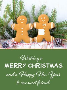 Sweet /& Kind Cute.. Granddaughter Christmas Greeting Card New Gift