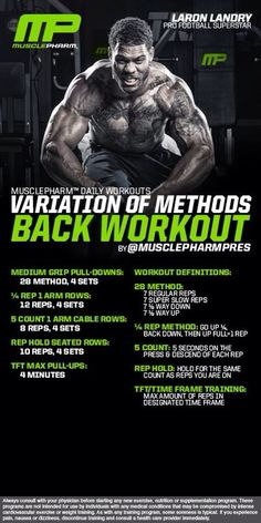 Variation of Methods Back Workout