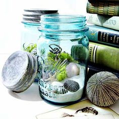 From dirt couture:  Coastal Terrarium This coastal terrariums is built in Minnesota with authentic blue mason jars that hold a collection of sand, shells, starfish, lichen and moss. In a pint-size jar with original zinc lid. Makes a great housewarming gift, something for your vacation home, and for gardeners who rather hit the beach than fiddle with plants.