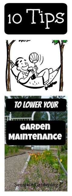 10 Tips to Lower your Garden Maintenance with Sensible Gardening and Living
