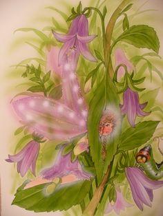 Diese Glockenblum-Elfchen ist für Eha-O  liebe Grüsse von Christl Vogl