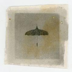 Vintage umbrellas. Photos on canvas. Our very own Autumn Spadaro.