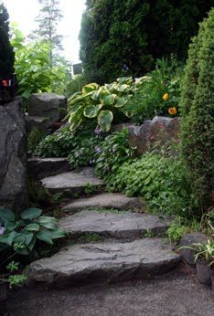 rock steps like this with little flowers in the crevices.love rock steps like this with little flowers in the crevices. Garden Paths, Garden Landscaping, Landscaping Ideas, Rock Steps, Stone Steps, Landscape Design, Garden Design, Garden Stairs, Shade Garden
