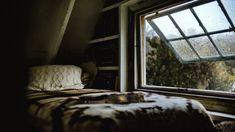 Beverly Katz, Rain Sleep, Rainy Window, Relaxing Gif, Rain And Thunder, Raining Outside, House In Nature, Sound Of Rain, I Cant Sleep