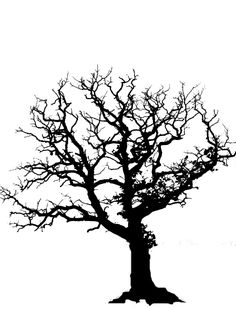 Tree Silhouettes | ... not know how to draw trees paint your trees black on watercolor paper