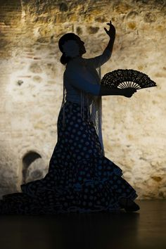 Dan-Sevilla-Andalusia-Flamenco-Seville-Spanish-1046485.jpg (480×720)