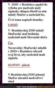 V ZOO v Bratislavě spadl do výběhu pro…